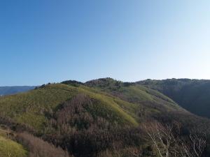 阿木川源流の山々