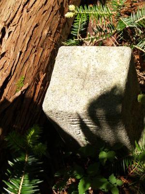 3等三角点「東加塩」の標石